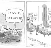 Lassie Finally Gets Help