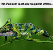 The Art Of Body Painting