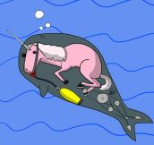 Finally, The Truth About Narwhals