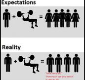 Gym Expectations Vs. Reality