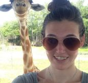 Long Horse Selfie