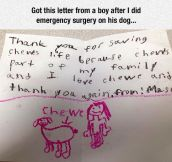 Vet Gets Unexpected Letter
