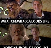 Looks Like Chewbacca Had Some Work Done On Himself