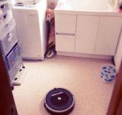 Terrifying Roombas