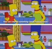 Bart Makes A Good Point