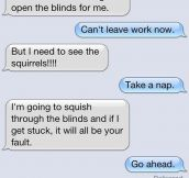 If Cats Could Text Their Owners