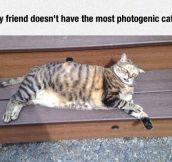 Not So Photogenic