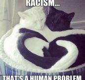Human Problem