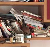 A Literal Reader's Nest