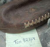 Tom Brady's Memorabilia