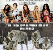 Female Friends Vs. Male Friends