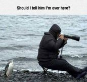 Confused Photographer
