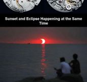 Amazing Photos You May Not Have Seen Before