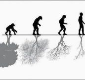 The Advance Of Human Evolution