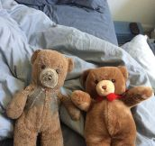 Two Teddy Bears, Many Years Later