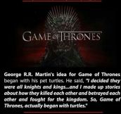 Game Of Turtles