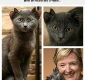 Mutant Cat Looks Like An Alien Pet