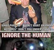 Ignore The Human
