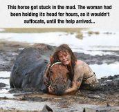She Is My Hero