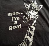 Long Horse Shirt