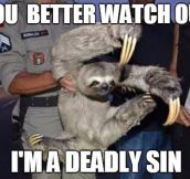 Beware Of Sloths