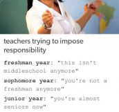 Teachers In A Nutshell
