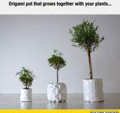New Origami Pots Design Concept