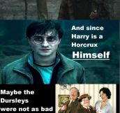 Vindicate The Dursleys