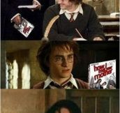 Have You Seen This, Harry?