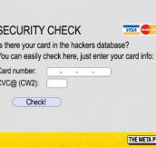 Just A Security Check