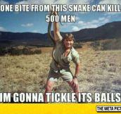 Steve Irwin The Legend