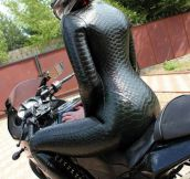Behold, The Anaconda Suit