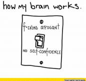 The Way My Brain Actually Works