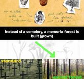Burial Pods, Why Aren't We Funding This?
