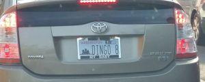 Interesting License Plate