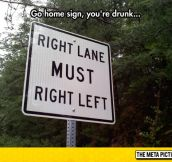 So I Should Turn…Left?