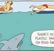 Shark's Food Nowadays