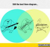 Brilliant Venn Diagram