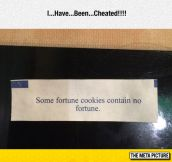 Some Fortune Cookies