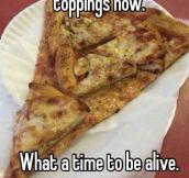 Yo Dawg, I Heard You Like Pizza