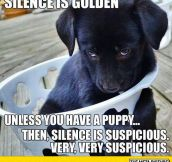 Silence Is Golden, Unless…