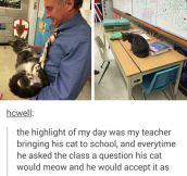 This Teacher Is Purrfect