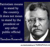 Nicely Said, Teddy