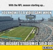 The Jaguars Stadium