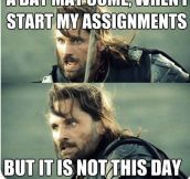 How I Feel About My Assignments