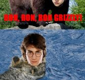 Potter Animal Farm