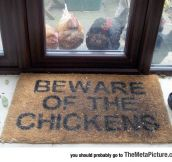 Just Don't Trust The Chickens