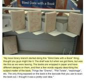 Blind Date With A Book, Brilliant Idea