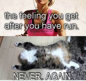 That Feeling After You Go For A Run