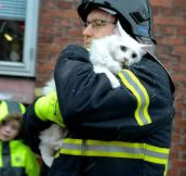 Rescuing A Kitty From A Fire